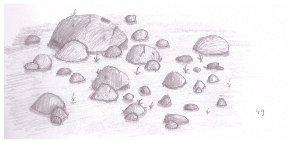 One of the drawings of rocks from my sketchbook.