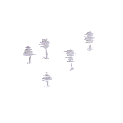 Some examples of the shadow trees.